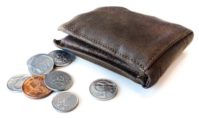 Peněženka a české mince, distribuční poplatky za plyn