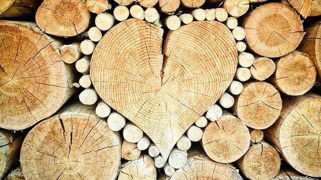 Srdce, cena palivového dřeva